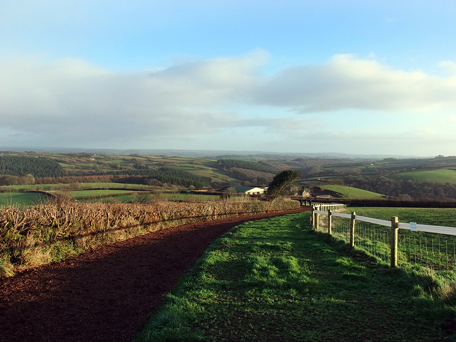 Devon views at Thorne Farm Racing