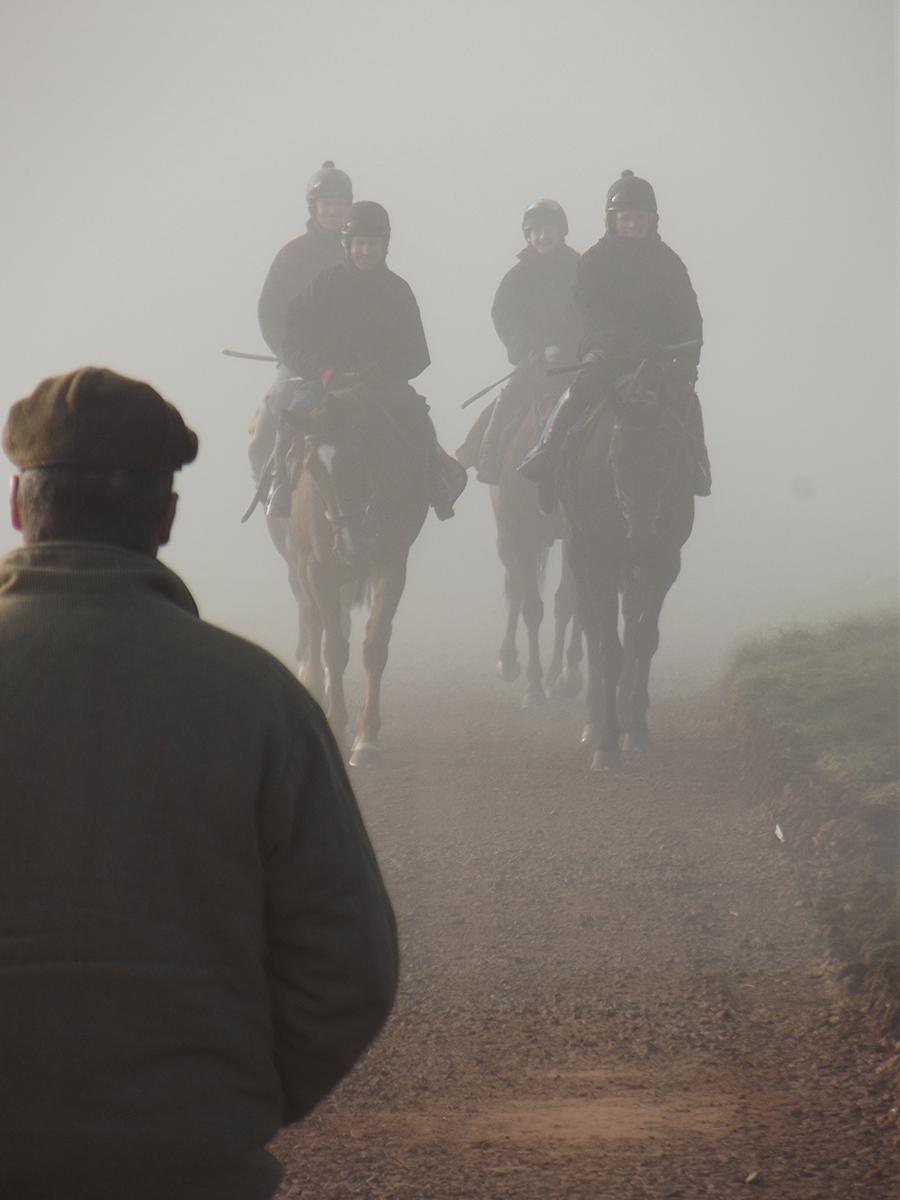 Foggy morning on the gallops