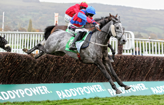 Anay Turge wins the 2013 PADDY POWER HANDICAP CHASE at Cheltenham