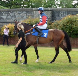 Atlantic Friends Racing - shares in a racehorse